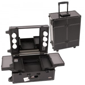 PRO STUDIO Makeup Rolling Cosmetic Train Case w/Light